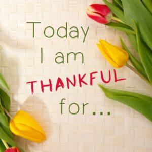 thankful-1081614-600-sq